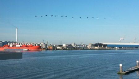 Vogelvlucht over Nieuwe Waterweg