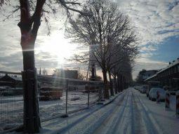 Papelaan in de sneeuw