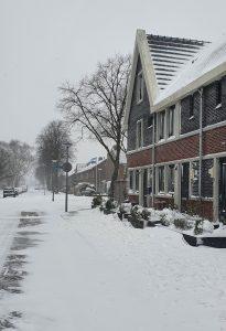 Sneeuw Papelaan Weesp